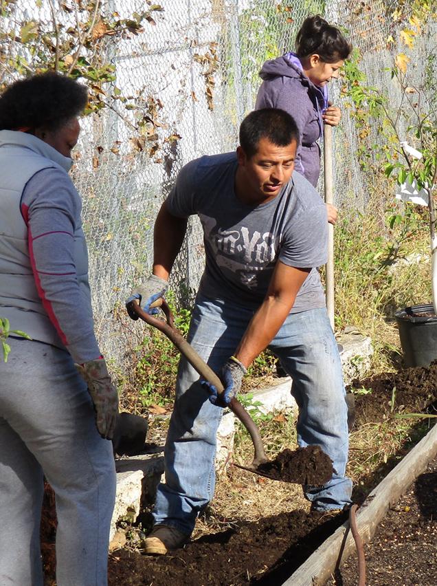 WSNRZ residents volunteering at our community farm